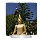 Wat Mai Buddha II Shower Curtain