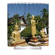 Wat Mai Buddhas Shower Curtain