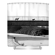 Watch Dogs Shower Curtain