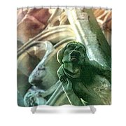 Watcher From Above Shower Curtain