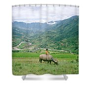 Water Buffalo Boy Shower Curtain