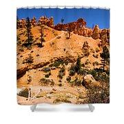 Water Canyon Dragon Shower Curtain
