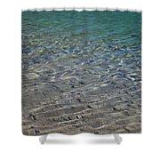 Water Depths Marine Shower Curtain