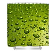 Green Card. Macro Photography Series Shower Curtain