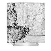 Water Fountain 1 Shower Curtain
