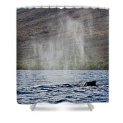 Water From A Whale Blowhole II Shower Curtain