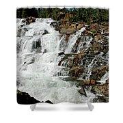 Water In Motion Glen Alpine Falls Shower Curtain
