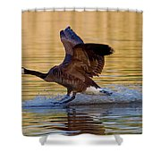 Water Landing Shower Curtain