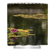 Water Lilies And Lily Pads Shower Curtain