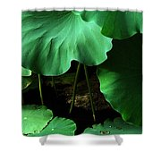 Water Lilies Of Green Shower Curtain