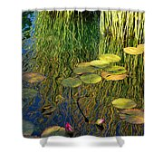 Water Lilies Reflection Shower Curtain