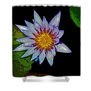 Water Lilly Paint Shower Curtain