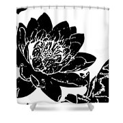 Water Lily Black And White Shower Curtain