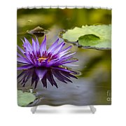 Water Lily Kissing The Water Shower Curtain
