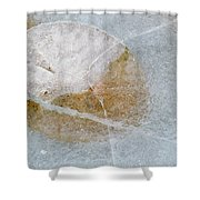 Water Lily Leaf In Ice, Boggy Lake Shower Curtain
