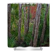 Water Park Shower Curtain
