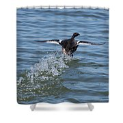 Water Polo Shower Curtain
