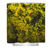 Water Reflection Abstract Autumn 1 F Shower Curtain
