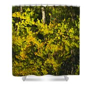 Water Reflection Abstract Autumn 1 G Shower Curtain