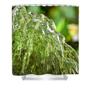 Water Shell Shower Curtain