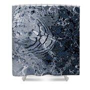 Water Spider Shower Curtain
