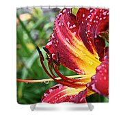 Watered Shower Curtain