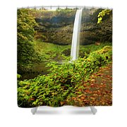 Waterfall Along The Trail Shower Curtain