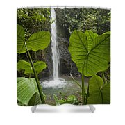 Waterfall In Lowland Tropical Rainforest Shower Curtain