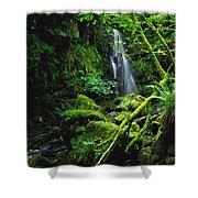 Waterfall, Sloughan Glen, Co Tyrone Shower Curtain