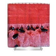 Watermelon Seeds Shower Curtain by Susan Herber