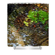 Watershed Creek Shower Curtain