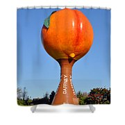 Watery Peach Shower Curtain