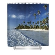 Waves Lapping Shore Of Beach With Palm Shower Curtain
