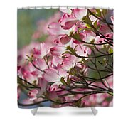 Waves Of Pink Light Shower Curtain