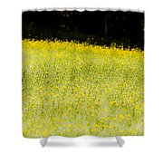 Waves Of Yellow Shower Curtain