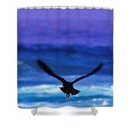 Wavewings Shower Curtain