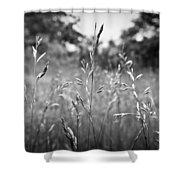 We Stand Together Shower Curtain