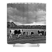 Weather Talk Monochrome Shower Curtain