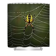 Weave Master Shower Curtain