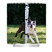 Weave Pole Wonder Shower Curtain