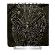 Web Master Shower Curtain