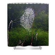 Web Over Foggy Lake Shower Curtain