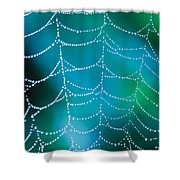 Web With Dew Droplets Shower Curtain