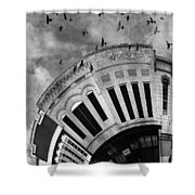 Wee Bryan Texas Detail In Black And White Shower Curtain by Nikki Marie Smith