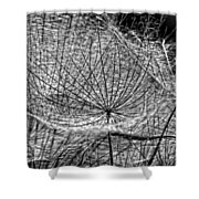 Weed Wandering Monochrome Shower Curtain