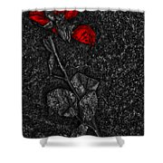 Weep Of A Rose  Shower Curtain