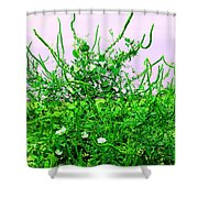 Weird Weeds Shower Curtain