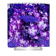 Welcome Flowers In Purple Shower Curtain