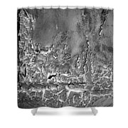 Well Weathered Shower Curtain
