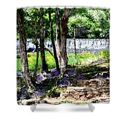Wellspring Of Life Shower Curtain